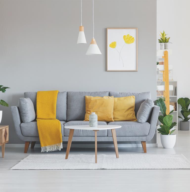 Szara kanapa z żółtymi poduszkami